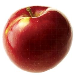 Ябълка Сорт Айдаред