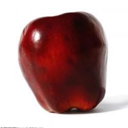 Ябълка Сорт Червена Превъзходна