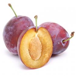 Слива сорт Президент(Prunus domestica)