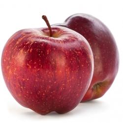 Ябълка Сорт Старк
